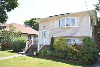 Westbury Single Family Home For Sale: 36 4th Ave