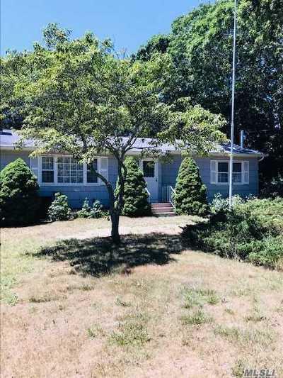 Hampton Bays Single Family Home For Sale: 3 Rutyna Cir