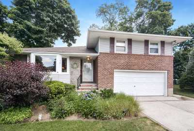 East Meadow Single Family Home For Sale: 717 Steven Ct