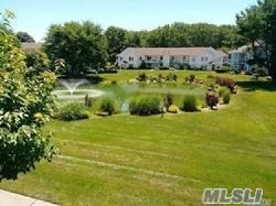Middle Island Condo/Townhouse For Sale: 165 Fairview Cir