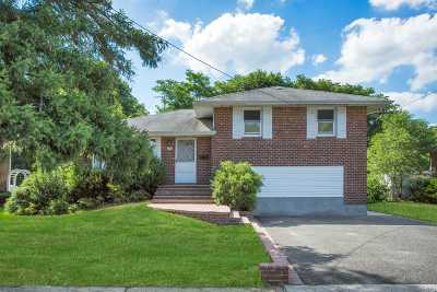 Syosset Single Family Home For Sale: 217 Jerome St