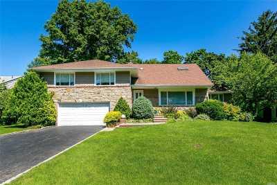 Roslyn Single Family Home For Sale: 26 Emm Ln
