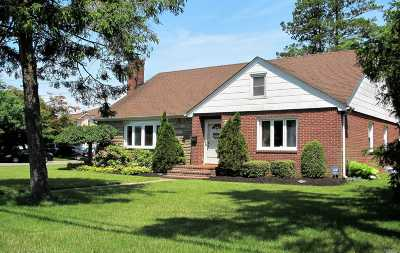 Hicksville Single Family Home For Sale: 52 Walter Ave