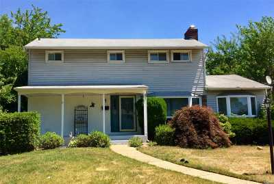 East Meadow Single Family Home For Sale: 461 Lakeville Ln