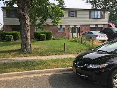 Levittown Single Family Home For Sale: 1 Glazer Ln