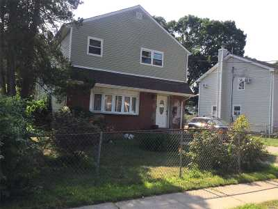 Westbury Single Family Home For Sale: 195 Garden St