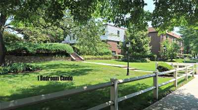 Kew Garden Hills Condo/Townhouse For Sale: 69-69 E Park Dr #2