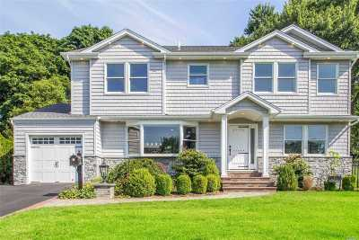Syosset Single Family Home For Sale: 11 Renee Rd