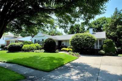 Syosset Single Family Home For Sale: 22 Edna Dr