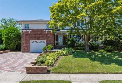 Carle Place, Westbury Single Family Home For Sale: 59 Audrey Rd