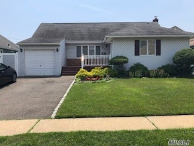 Bethpage Single Family Home For Sale: 3620 Collector Ln