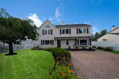 Levittown Single Family Home For Sale: 6 Spring Ln