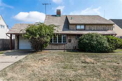 Levittown Single Family Home For Sale: 250 S Blacksmith Rd