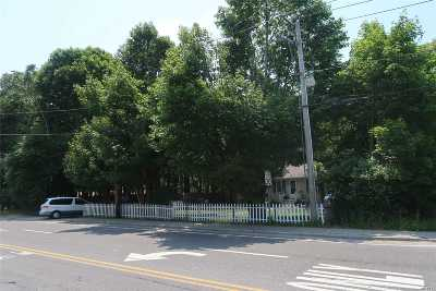Suffolk County Commercial For Sale: 460 Station Rd