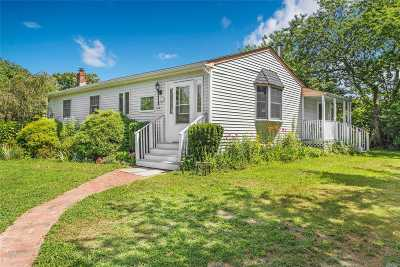 Westhampton Single Family Home For Sale: 46b Old Country Rd