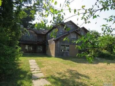 Brentwood Single Family Home For Sale: 80 Lukens Ave