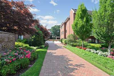 Rockville Centre Condo/Townhouse For Sale: 99 S Park Ave #225