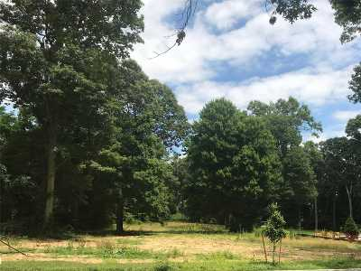 Dix Hills Residential Lots & Land For Sale: Lot 13 Sleepy Hollow Ln