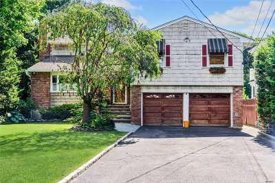 Rockville Centre Single Family Home For Sale: 159 Hendrickson Ave