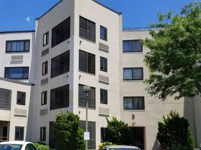 Nassau County Condo/Townhouse For Sale: 725 Miller Ave