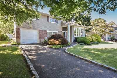 Nassau County Single Family Home For Sale: 3 Phipps Ln