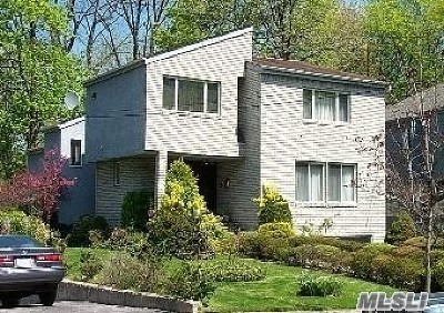 Great Neck Single Family Home For Sale: 17 Wooleys Ln
