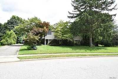 Roslyn Single Family Home For Sale: 34 Shepherd Ln
