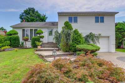 Bethpage Single Family Home For Sale: 114 Farmers Ave
