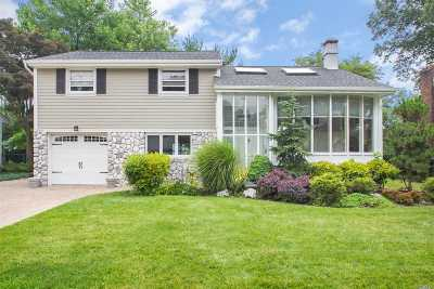 Syosset Single Family Home For Sale: 10 Roberta Ln