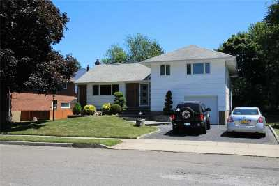 Syosset Single Family Home For Sale: 3 Westminster Rd