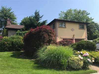 Jericho Single Family Home For Sale: 7 Steuben Dr