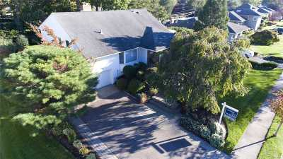 Jericho Single Family Home For Sale: 54 Hightop Ln