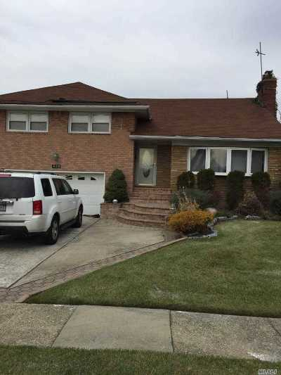 Westbury Single Family Home For Sale: 825 Eastfield Rd