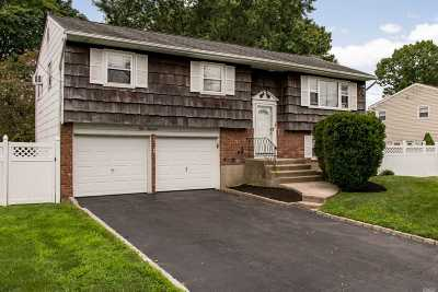 Commack Single Family Home For Sale: 100 New Hwy