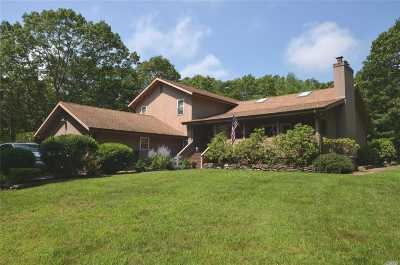 Hampton Bays Single Family Home For Sale: 7 Debbie Trl