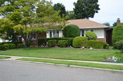 Levittown Single Family Home For Sale: 412 Parker Ave