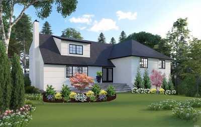 Hewlett Single Family Home For Sale: 255 Pepperidge Rd