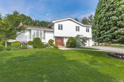 Jericho Single Family Home For Sale: 10 Warren Ln