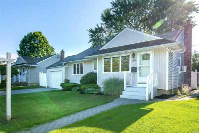 Hicksville Single Family Home For Sale: 133 Pollok