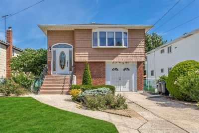Baldwin Single Family Home For Sale: 799 Grace St