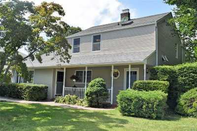 Westbury Single Family Home For Sale: 117 Lexington St