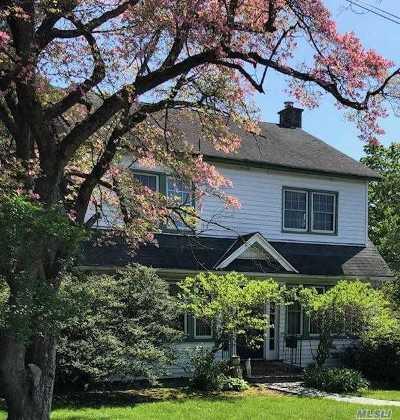 Port Washington Single Family Home For Sale: 22 3rd Ave