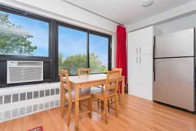 Long Island City Co-op For Sale: 33-43 14th St #7C