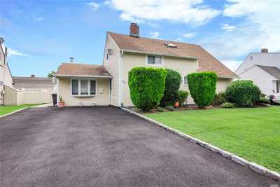 Hicksville Single Family Home For Sale: 23 Wishing Ln