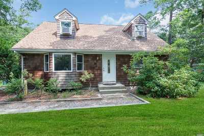 Hampton Bays Single Family Home For Sale: 106 W Tiana Rd