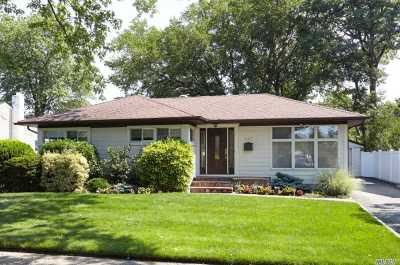 East Meadow Single Family Home For Sale: 527 Larch Ln