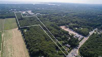 Remsenburg Residential Lots & Land For Sale: 149 Old Country Road