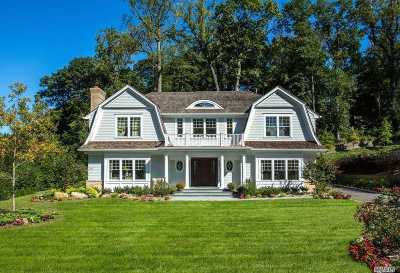 Manhasset Single Family Home For Sale: 142 Plymouth Ct