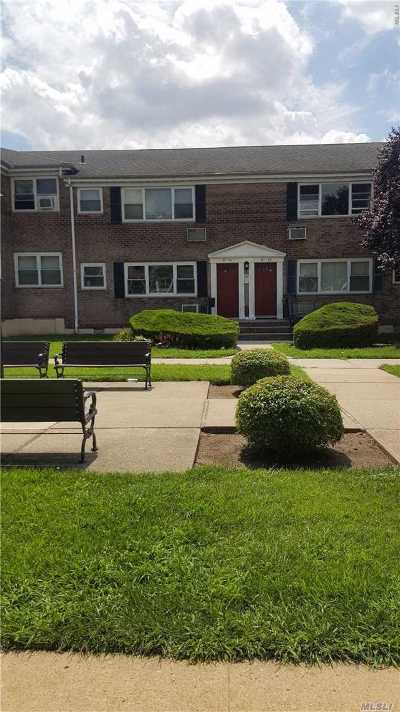 Kew Garden Hills NY Co-op For Sale: $248,888