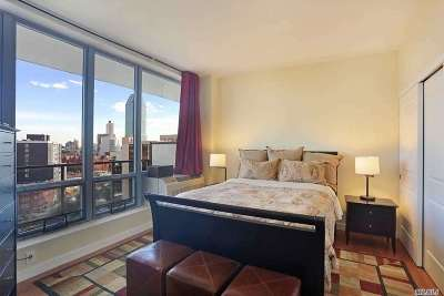 Long Island City Condo/Townhouse For Sale: 48-15 11th St #11F